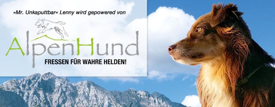 banner_alpenhund