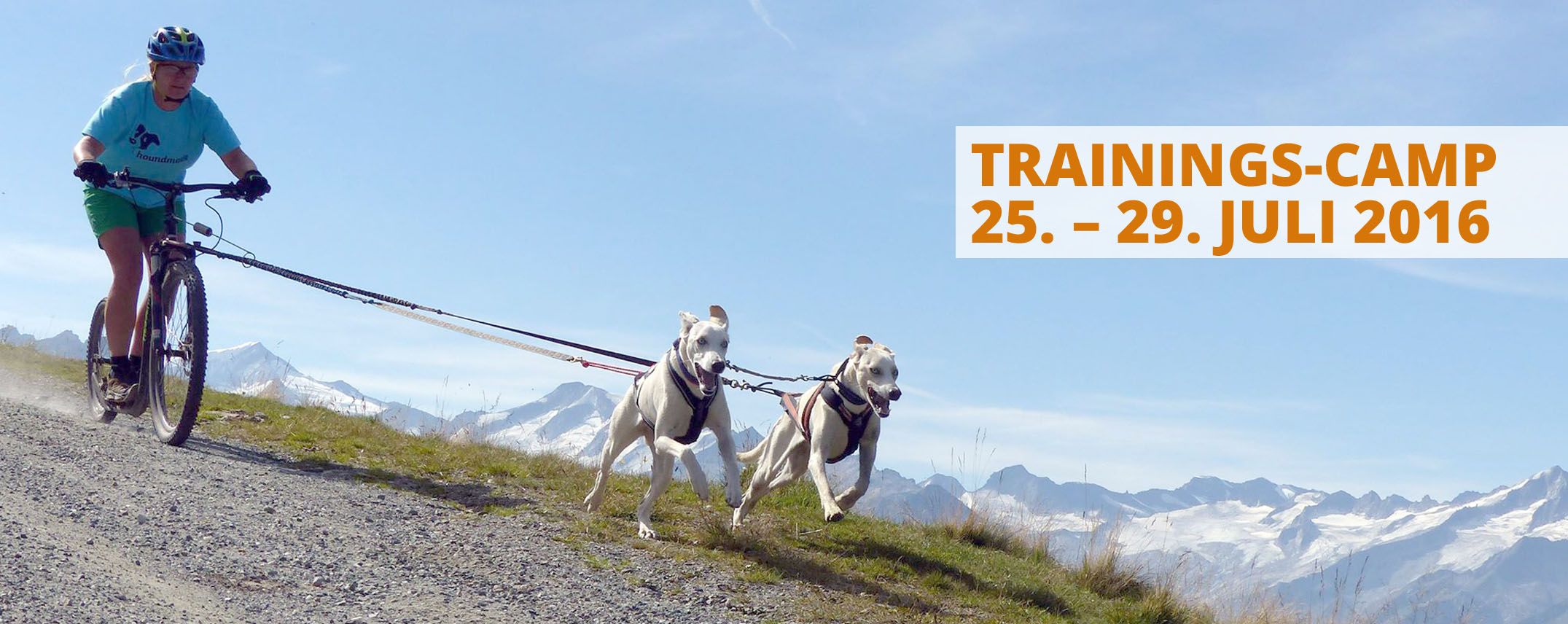 dogandsport_trainingscamp